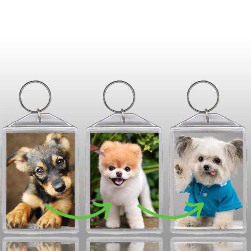 Lenticular-Flip-keychain-dogs-800x800-3dr